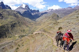 Lares Trek - Saywas Expeditions - 9